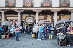 Mexico City Plaze de Santo Domingo