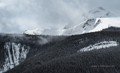 Snow Clouds Moving In (C_B_Images) Tags: spring nature canada banffnationalpark alberta 150
