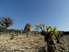 Garbia (eitb.eus) Tags: eitbcom 27117 g1 tiemponaturaleza tiempon2017 alava laguardia miguelangellopezdelacalle