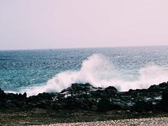 Windsurfers riding the waves on the horizon... (lindsaythomas3) Tags: lanzarote windsurfers waves