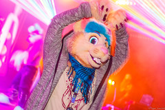 _MG_0625 (Tiger_Icecold) Tags: confuzzled cfz2016 cf2016 furcon furry convention fursuit birmingham party deaddog ddp deaddogparty