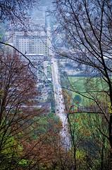 Grottenhofstrasse (rofrhu) Tags: grottenhoff strasse graz wald auto grottenhofstrasse grau grün blau robert hummer roberthummer d7000 nikon