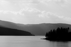 Schluchsee - Afternoon ((c)gphoto) Tags: schluchsee deutschland schwarzwald germany blackforest lake water nature sun peoplebeauty calm silent mood air weekend sunday afternoon blackandwhite blackwhite silverefex ilford photoeffect grain canoneos6d