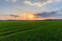 Energie am Abend (webpinsel) Tags: felder windräder landschaft halternamsee sonnenuntergang münsterland frühling sythen abendsonne natur wolken