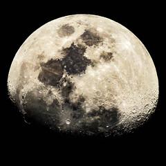 More Moon Pix (AtomicMush a.k.a. gary) Tags: moon nikoncoolpixp900