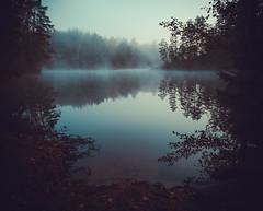 Cold Cove (trm42) Tags: poukama autumn kansallispuisto finland usva teijo syksy lake fall suomi olympusomd morning vesi beach em1 bay reflection water fog järvi mist tekoallas nationalpark