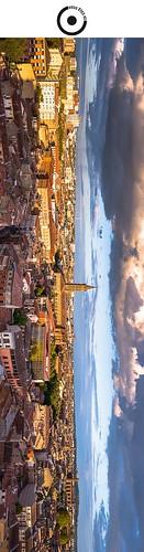 19x5cm // Réf : 12040728 // Toulouse