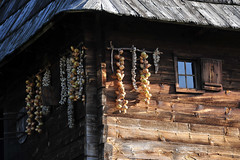 À Sirogojno, village traditionnel en Serbie (Voyages Lambert) Tags: retrostyled candid residentialbuilding nonurbanscene nopeople rustic community beautyinnature farmworker countryandwesternmusic cabin dependency preserved indigenousculture medieval history thepast idyllic simplicity woodmaterial old cultures architecture nature lifestyles ruralscene outdoors serbia balkans europe tree mountain hill forest house museum fence builtstructure village pictorial zlatibor serbianculture sirogojno highland countrygeographicarea