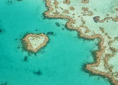 Sea whim - Heart shape (Josué Godoy) Tags: heart corazón coeur arrecife reef recif australia coral azul blue bleu mar mer sea seascape love amor amour
