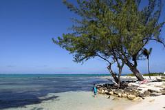 Grand Cayman (donachadhu) Tags: grandcayman caribbean sonya77