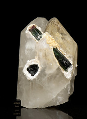 Elbaite with Mica in Quartz  NHMLA 48550 (Stan Celestian) Tags: elbaite mica quartz nhmla48550