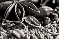 dark spice (LoomahPix) Tags: 7dwf blackandwhite cardamom closeup clove cumin fennel flickr food macro macromondays macrophotography memberschoiceseeds monochrome monochromephotography poppy seeds