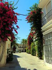 <Fray Baldomero González> Chipiona (Cádiz) (sebastiánaguilar) Tags: 2013 chipiona cádiz andalucía españa calles