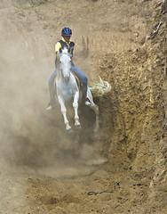 _S5Y7760 (Pete Flick) Tags: horse caballo ecuador action falling foxhunt ibarra equine horsejumping horseandrider caseriadelzorro