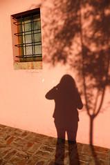 La ventana y yo (Letua) Tags: shadow window ventana sombra