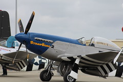 North American P-51 Mustang (2wiice) Tags: art nose mustang noseart p51 p51mustang northamerican salinasairshow northamericanp51mustang northamericanp51 californiainternationalairshow northamericanmustang salinas2014