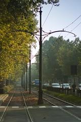 Rotaie torinesi - Turin railroad (bisont19) Tags: street verde green alberi train torino turin treno ferrovia urbanview paesaggiourbano