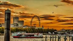 HC9Q0347_HDR-1 (rodwey2004) Tags: sunset london westminster thames cityscape dusk londoneye parliament bigben