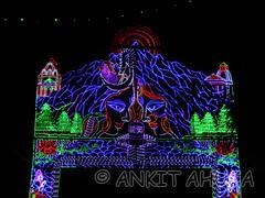 DSCN0620 (ankit10217) Tags: pune durga shakti parvati ambika sati bhairavi katyayani bhuvaneshwari chinnamasta navdurga mahagauri kaalratri siddhidatri kushmanda chandraghanta dhumavati skandamata brahmacharini vaishnomaa shailaputri durgapuja2014 navratri2014 ankitahuja shivaradni bhavaani navratridurgapuja2014