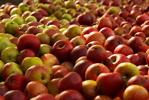 Apples over apples