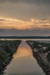 Llenando la Mata (Xente SL) Tags: water de la laguna mata horizonte guardamar torrevieja lacune acequión