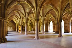 Glasgow University Cloisters (Michelle O'Connell Photography) Tags: scotland education glasgow arches historical cloister tradition neogothic exam partick cloisters westend kelvingrove glasgowuniversity universityofglasgow kelvinhall examhalls michelleoconnellphotography