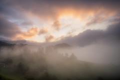 Apri gli occhi (alex.pallavisini) Tags: trees fall fog alberi sunrise october alba ombre slovenia nebbia autunno bosco friuli ottobre 2014
