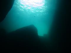 Tunnel, Inland Sea, Gozo (yayapapaya77) Tags: light sun fish wall licht rocks underwater wand tunnel diving malta fisch sonne mediterraneansea gozo felsen tauchen unterwasser inlandsea mittelmeer steilwand canonpowershotg15