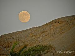 Moonrise/Sunset Naama Bay 2014 (someofmypics) Tags: sunset nikon egypt moonrise cosmos sharm naamabay sonestabeach hiltonfayrouz