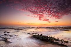 Newport Beach - Pink Dawn (sachman75) Tags: longexposure morning pink seascape beach water clouds sunrise landscape dawn rocks waves sydney australia newportbeach nsw newsouthwales northernbeaches canon1740mmf4l sonya7r