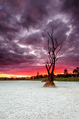 Dam! what a Sunset (Beth Wode Photography) Tags: sunset sky tree clouds canon landscape sundown dusk beth dam deadtree drought wode dryweather drydam 5dmarkiii bethwode dambed