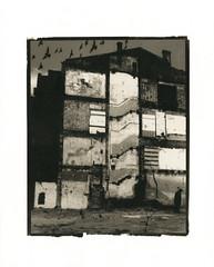 no title (Alexander Tkachev) Tags: cityscape 8x10 35mmfilm palladium alternative contactprint alternativephotography digitalnegative altprocess archesplatine palladiumprint alexandertkachev