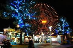 Cosmoworld, Minatomirai (kana hata) Tags: park christmas people japan night yokohama
