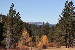 (Lonesome Traveler (J Haeske)) Tags: california fall landscape fallcolors meadow aspen truckee truckeeca