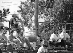 portland june '88 (santa cruz graybeard) Tags: trees blackandwhite bw sunglasses candid 1988 racing baseballhat fans autoracing cart spectators motorsport champcar indycar portlandinternationalraceway carracing roadracing grandstands blackwhitephotos openwheelracing marcsproule