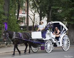 NYC Central Park (FAR_ _Photography) Tags: new york nyc people horse fun nikon centralpark sunday relaxing riding bigapple sundayfunday d5200