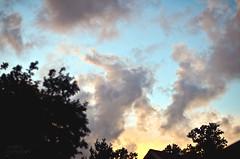 Evening Sky (Simply Vintagegirl) Tags: blue autumn trees sunset summer sky sun rooftop yellow clouds evening skies indiana treetops september eveningsky