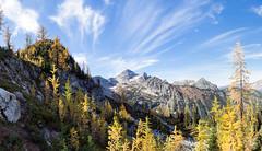 _DSC6883 (jyl4032) Tags: hikes heatherpass 2014 northcascadesnationalpark okanogannationalforest maplepassloop