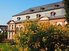 Orangerie (rscharroo) Tags: olympus darmstadt orangerie em10