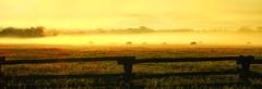 (LuminousWest) Tags: ranch horses panorama west fog sunrise fence landscape hole sigma panoramic jackson pasture dp wyoming luminous merrill wy foveon dp3 x3f dp3m luminouswest sdim2591