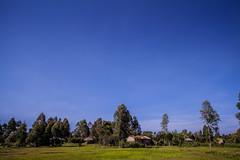 Kisumu countryside | Kenya (ReinierVanOorsouw) Tags: kenya health wash kenia hygiene ngo sanitation kakamega kenyai kisumu beyondborders gezondheid qunia  simavi   beyondbordersmedia beyondbordersutrecht sanitatie ngoproject