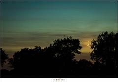 sized__H013657 (nandOOnline) Tags: star nacht nederland jupiter peel avond limburg landschap schemering nachtfotografie ster maan planeet sikkel sterrenbeeld grootepeel avondschemering lichtvervuiling sterrenhemel maansikkel ospeldijk