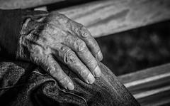 A hand (pootlepod) Tags: street blackandwhite male monochrome closeup photography hand study stphotographia