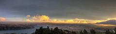 Riley- (Riley Baker - NZ) Tags: newzealand otago dunedin