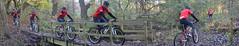 Rider crosses Bridge (benjamin.seeley) Tags: bike sport coursework onyerbike