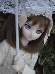 Inspirational Outing 14 (sakura_chan15) Tags: dd volks fatestaynight dollfiedream saberalter