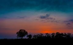 greek sunrise (maikepiel) Tags: morning trees light sea sky orange silhouette clouds sunrise licht meer silhouettes himmel wolken bume sonnenaufgang morgen