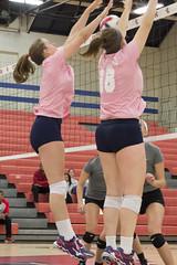 DJT_4155 (David J. Thomas) Tags: college sports athletics women volleyball arkansas bison scots naia batesville hardinguniversity lyoncollege
