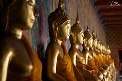 Buddha after Buddha (Aaron Velez) Tags: travel orange thailand temple golden outdoor buddha indoor thai repetitio
