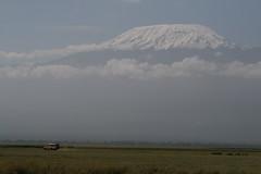 - (spice_) Tags: africa travel kilimanjaro digital canon eos kenya sigma amboseli 400d kissx アンボセリ キリマンジャロ ケニヤ